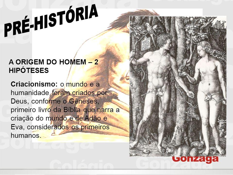 PRÉ-HISTÓRIA A ORIGEM DO HOMEM – 2 HIPÓTESES
