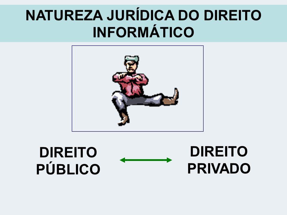 NATUREZA JURÍDICA DO DIREITO INFORMÁTICO