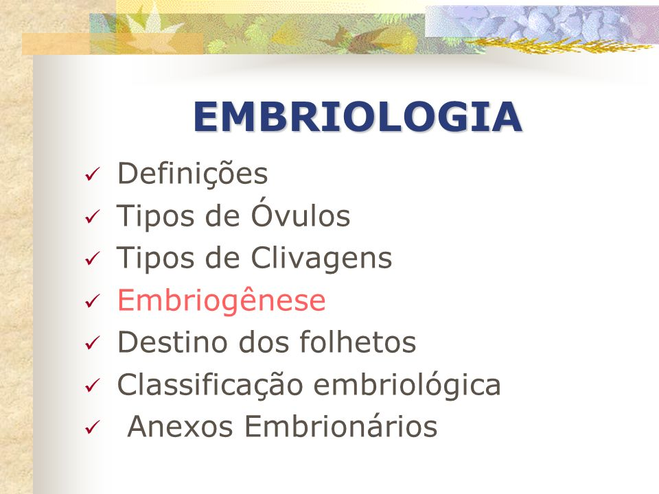 EMBRIOLOGIA Definições Tipos de Óvulos Tipos de Clivagens Embriogênese
