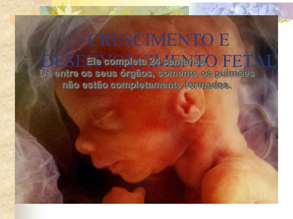CRESCIMENTO E DESENVOLVIMENTO FETAL
