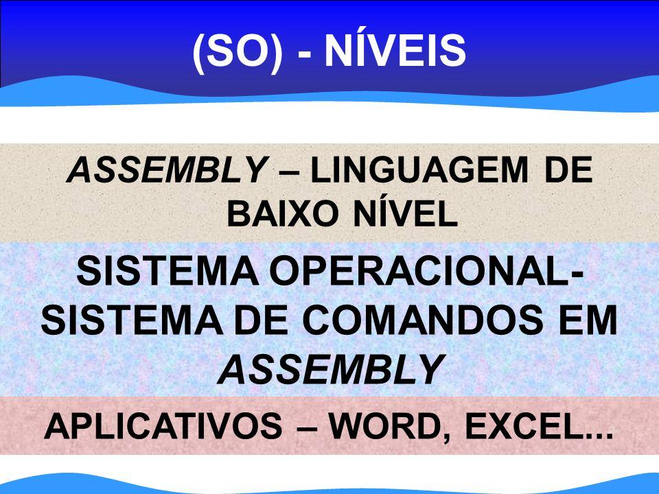 (SO) - NÍVEIS SISTEMA OPERACIONAL- SISTEMA DE COMANDOS EM ASSEMBLY