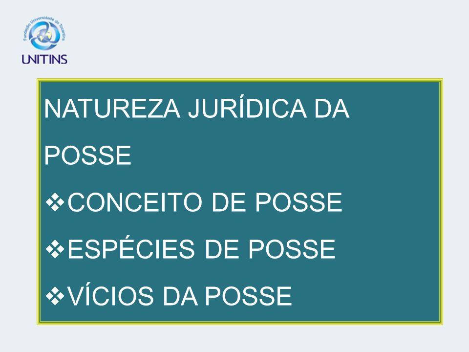 NATUREZA JURÍDICA DA POSSE