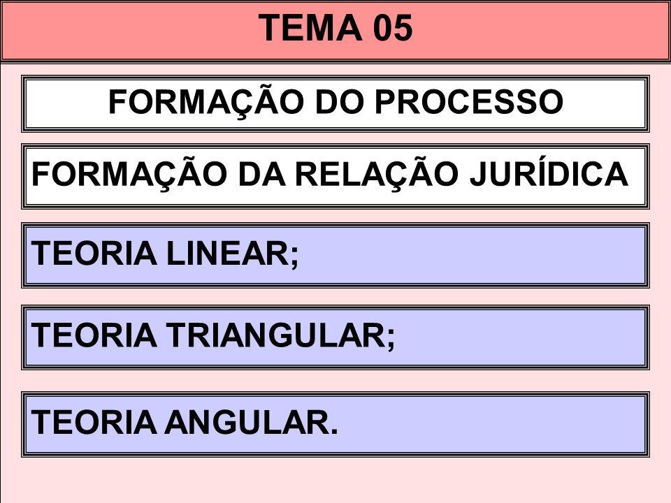 TEMA 05 FORMAÇÃO DO PROCESSO FORMAÇÃO DA RELAÇÃO JURÍDICA
