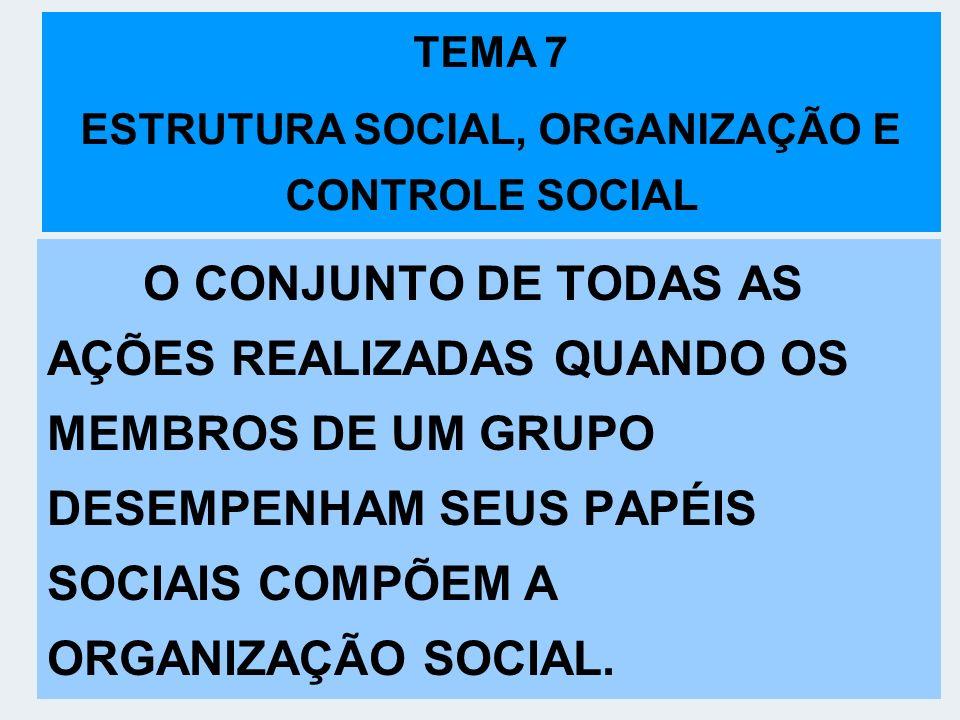 ESTRUTURA SOCIAL, ORGANIZAÇÃO E CONTROLE SOCIAL