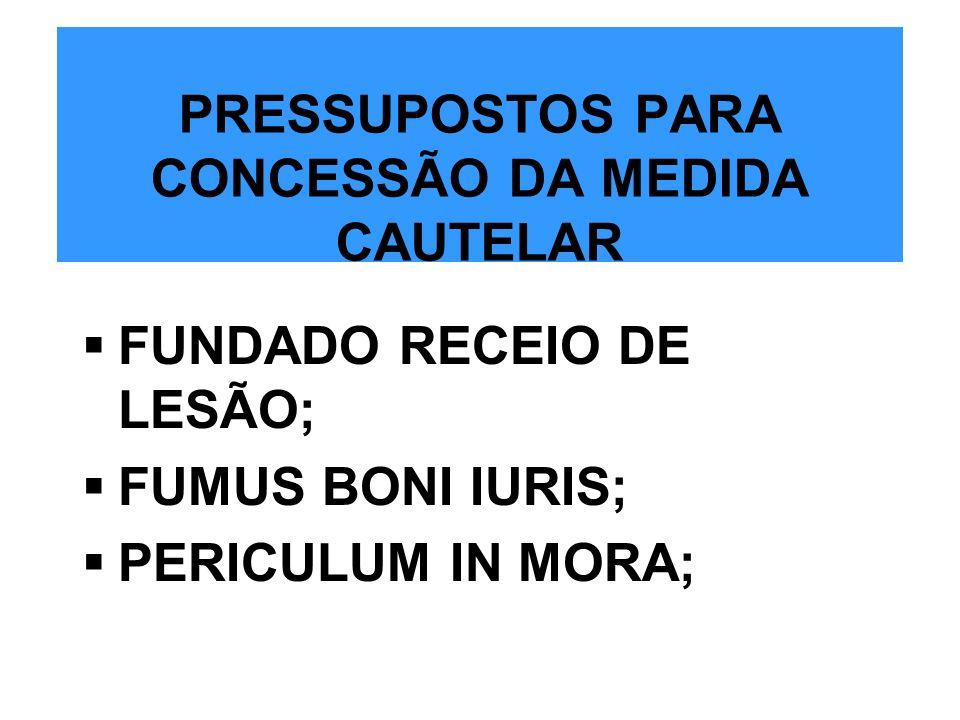 PRESSUPOSTOS PARA CONCESSÃO DA MEDIDA CAUTELAR
