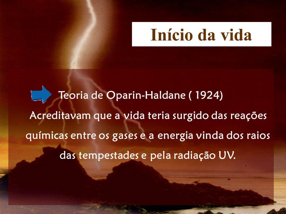 Teoria de Oparin-Haldane ( 1924)