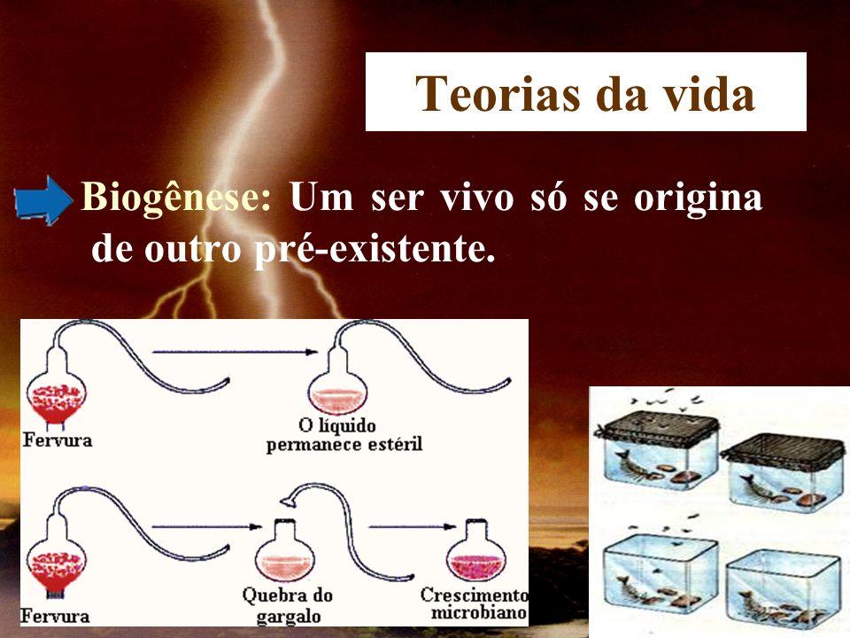 Teorias da vida Biogênese: Um ser vivo só se origina de outro pré-existente.