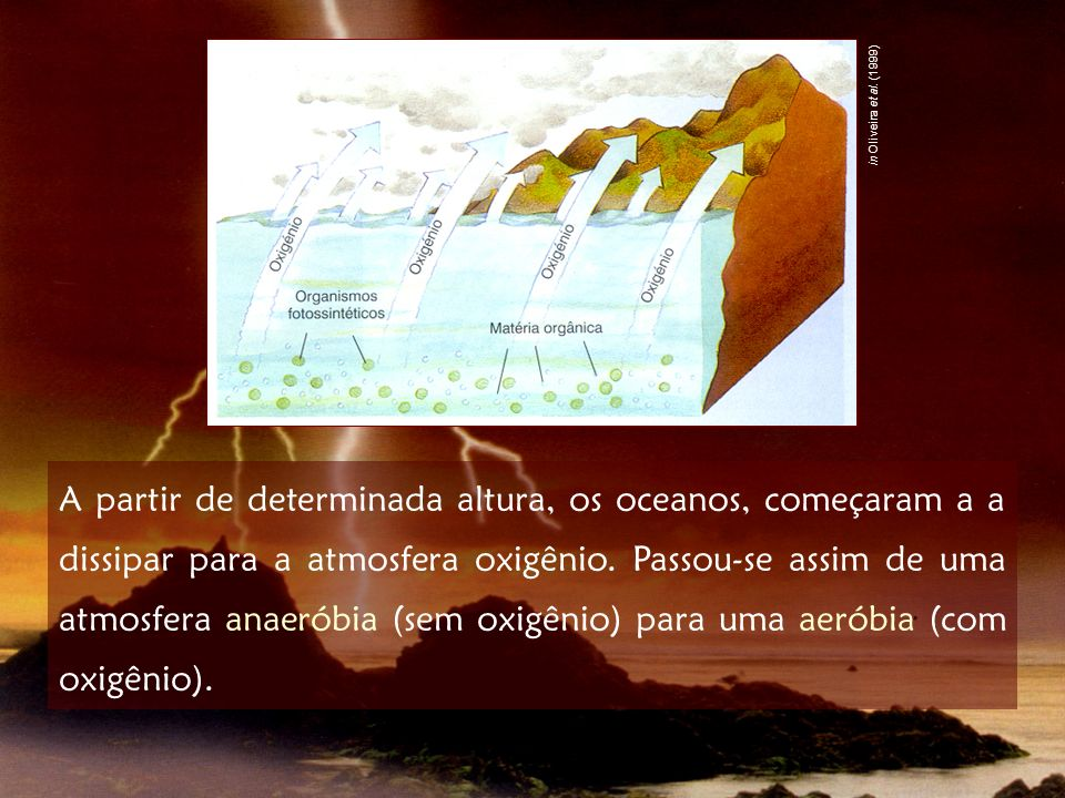 in Oliveira et al. (1999)