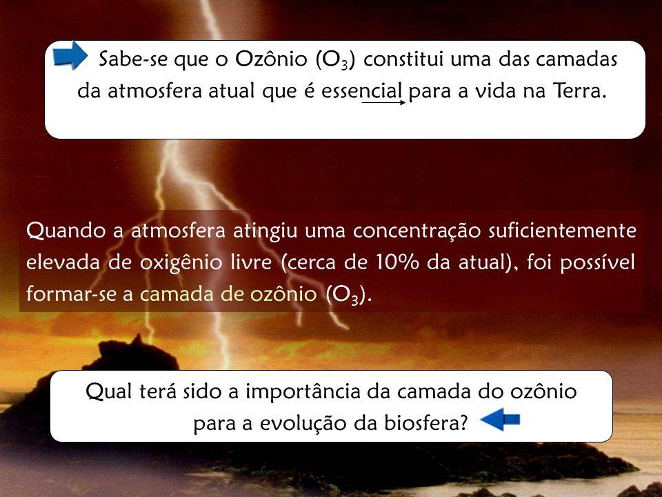 Sabe-se que o Ozônio (O3) constitui uma das camadas