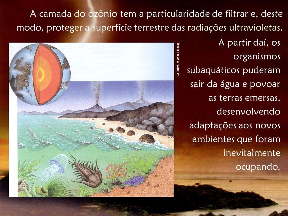 A camada do ozônio tem a particularidade de filtrar e, deste modo, proteger a superfície terrestre das radiações ultravioletas.