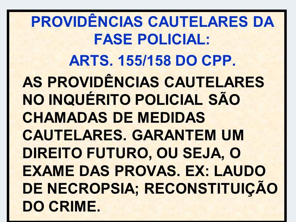 PROVIDÊNCIAS CAUTELARES DA FASE POLICIAL: