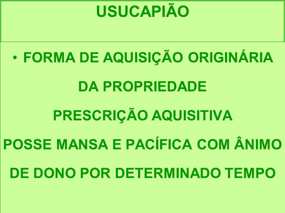 USUCAPIÃO FORMA DE AQUISIÇÃO ORIGINÁRIA DA PROPRIEDADE