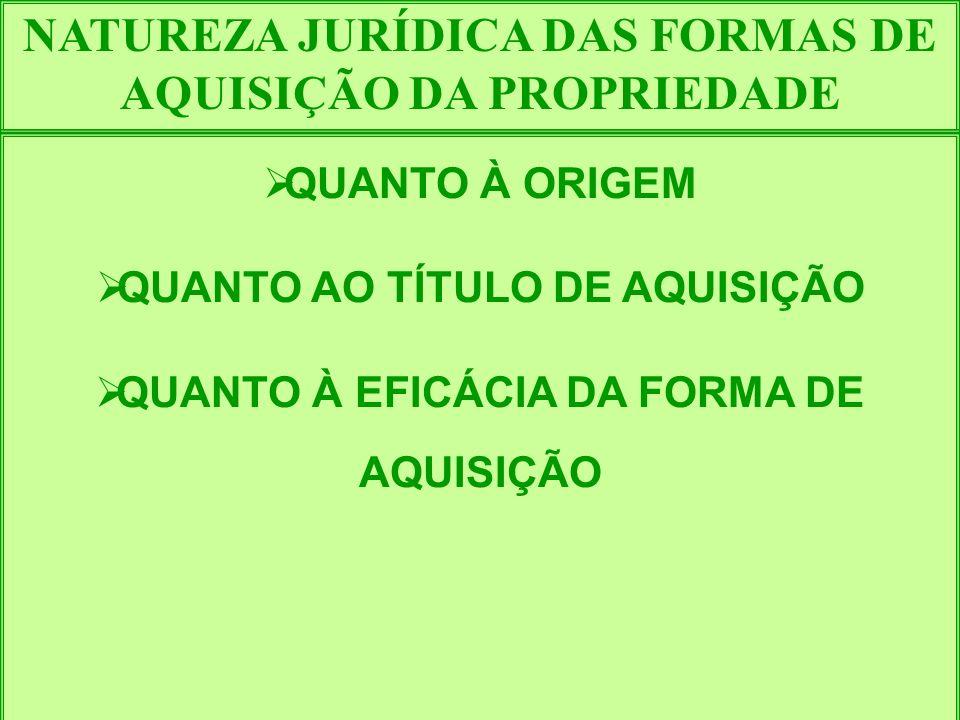 NATUREZA JURÍDICA DAS FORMAS DE AQUISIÇÃO DA PROPRIEDADE