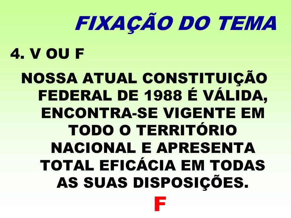 FIXAÇÃO DO TEMA 4. V OU F.