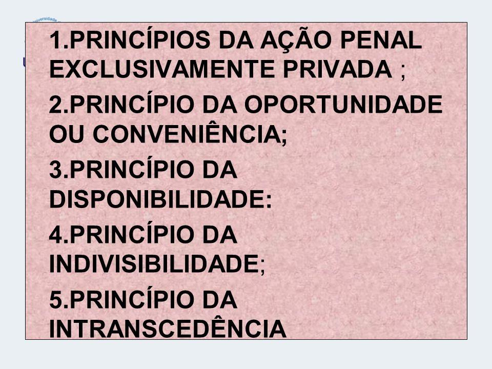 PRINCÍPIOS DA AÇÃO PENAL EXCLUSIVAMENTE PRIVADA ;