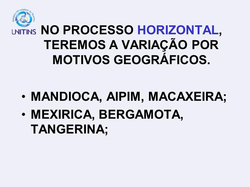 NO PROCESSO HORIZONTAL, TEREMOS A VARIAÇÃO POR MOTIVOS GEOGRÁFICOS.