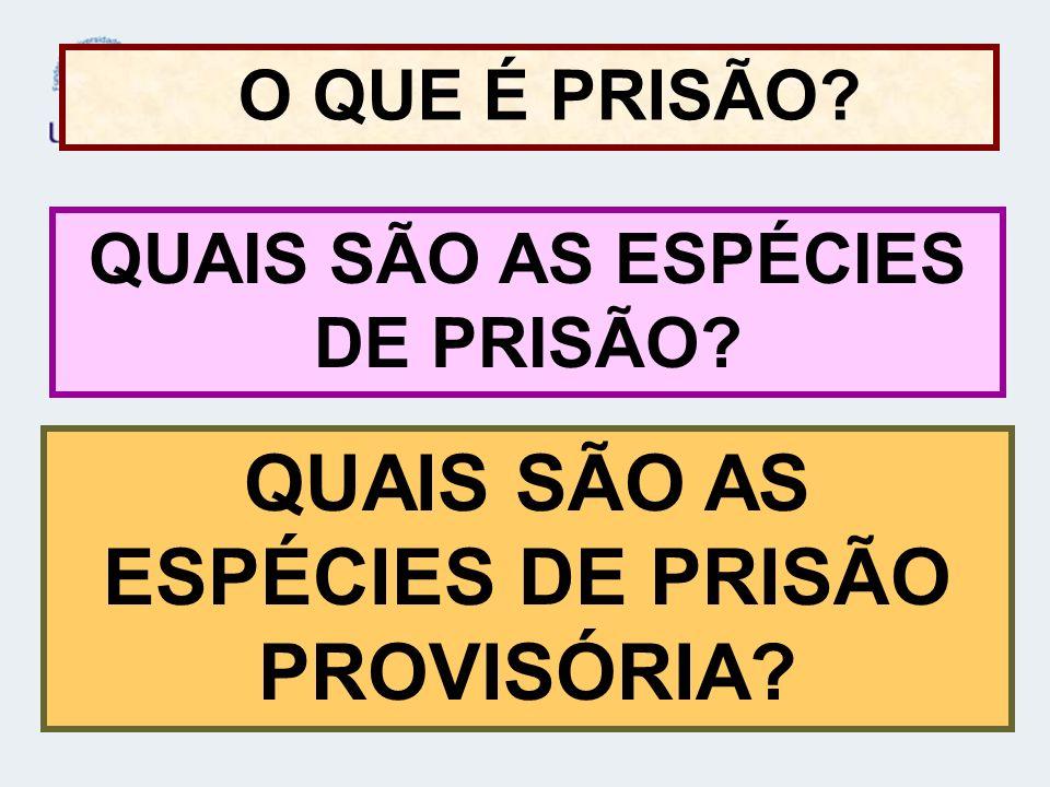 QUAIS SÃO AS ESPÉCIES DE PRISÃO PROVISÓRIA