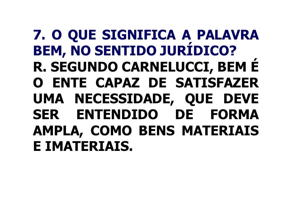 7. O QUE SIGNIFICA A PALAVRA BEM, NO SENTIDO JURÍDICO