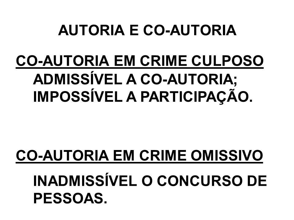 CO-AUTORIA EM CRIME CULPOSO