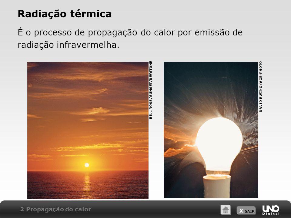 Radiação térmica É o processo de propagação do calor por emissão de radiação infravermelha. DAVID EWING/AGB-PHOTO.
