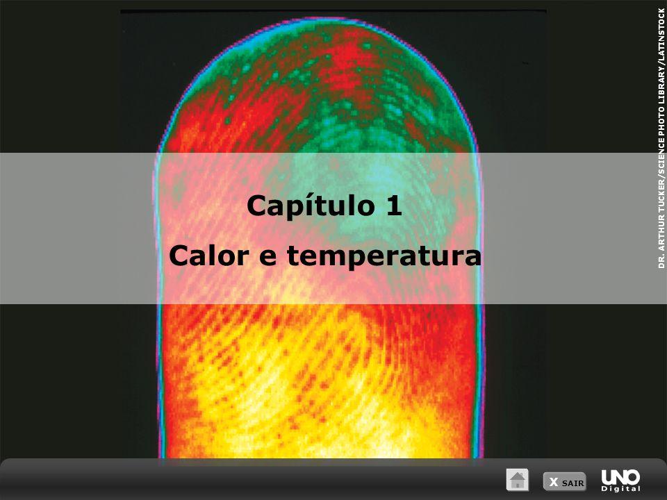 Capítulo 1 Calor e temperatura