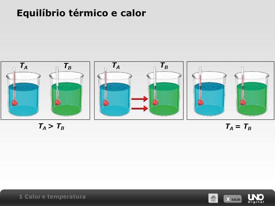 Equilíbrio térmico e calor