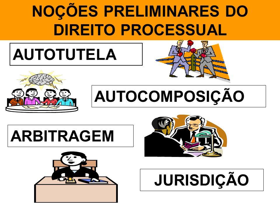 NOÇÕES PRELIMINARES DO DIREITO PROCESSUAL