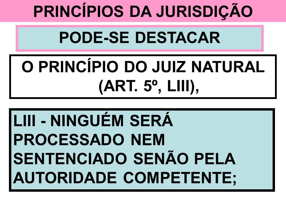 PRINCÍPIOS DA JURISDIÇÃO O PRINCÍPIO DO JUIZ NATURAL (ART. 5º, LIII),
