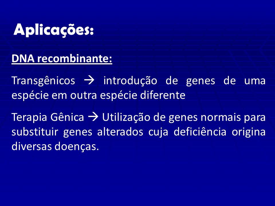 Aplicações: DNA recombinante:
