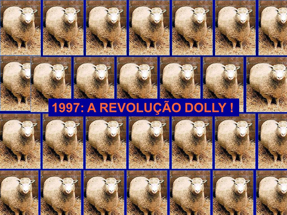 1997: A REVOLUÇÃO DOLLY !