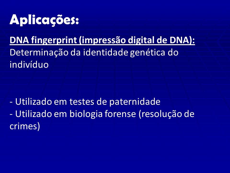 Aplicações: DNA fingerprint (impressão digital de DNA):