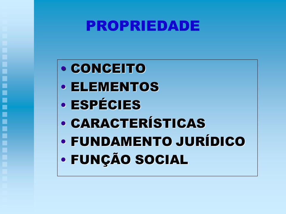 PROPRIEDADE CONCEITO ELEMENTOS ESPÉCIES CARACTERÍSTICAS
