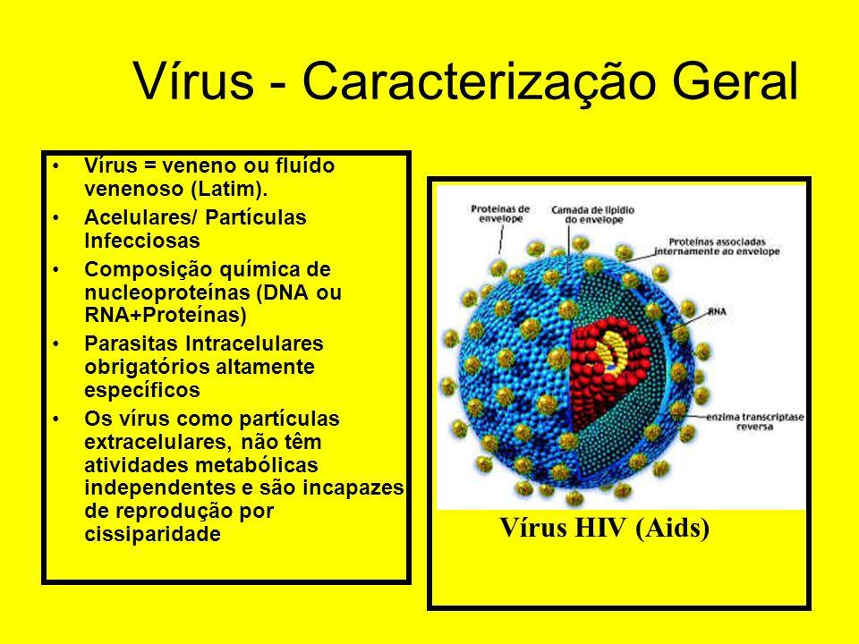 Vírus - Caracterização Geral