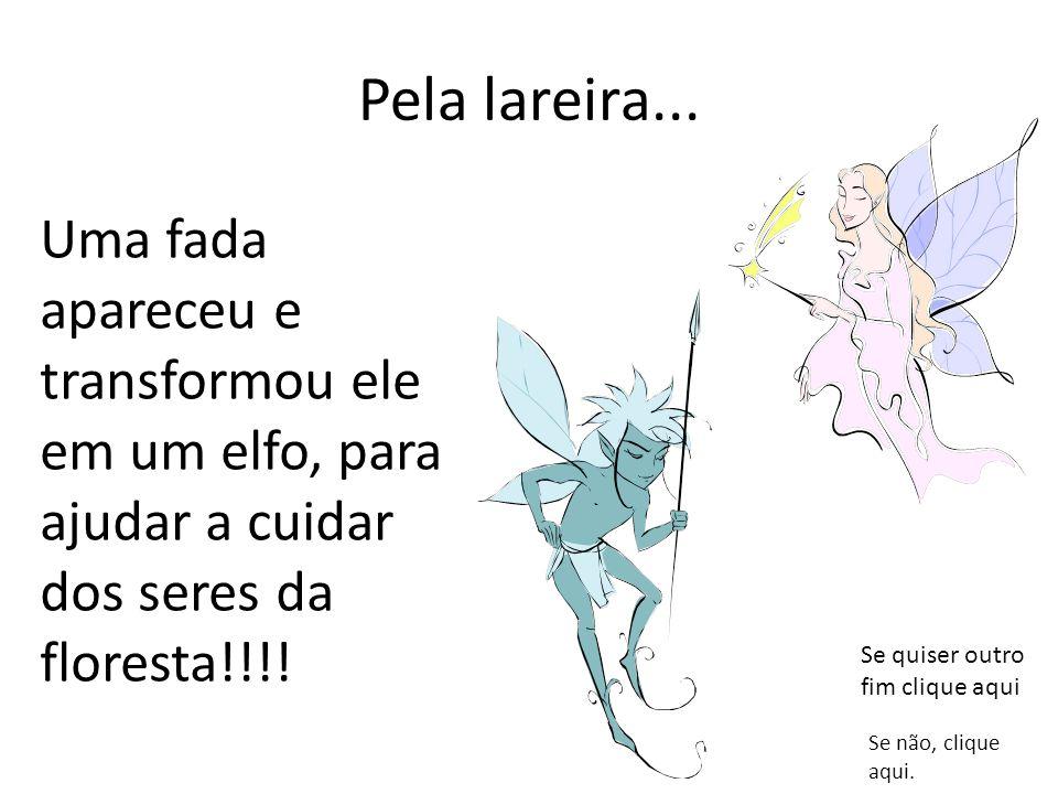 Pela lareira... Uma fada apareceu e transformou ele em um elfo, para ajudar a cuidar dos seres da floresta!!!!