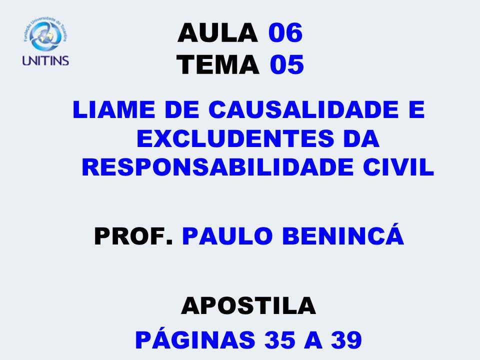 LIAME DE CAUSALIDADE E EXCLUDENTES DA RESPONSABILIDADE CIVIL
