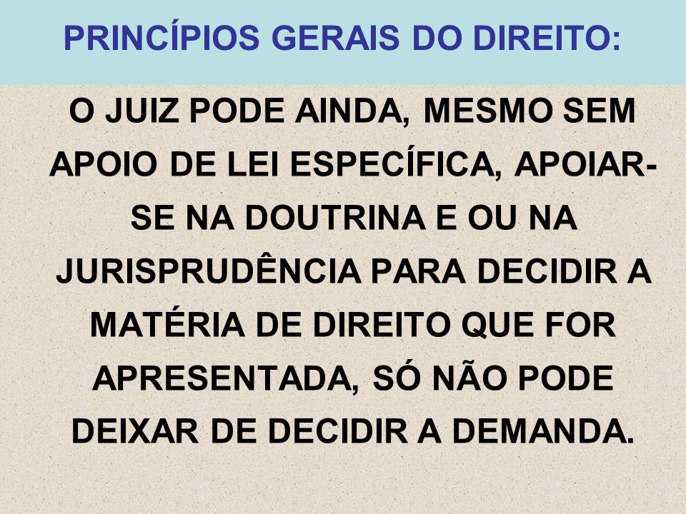 PRINCÍPIOS GERAIS DO DIREITO: