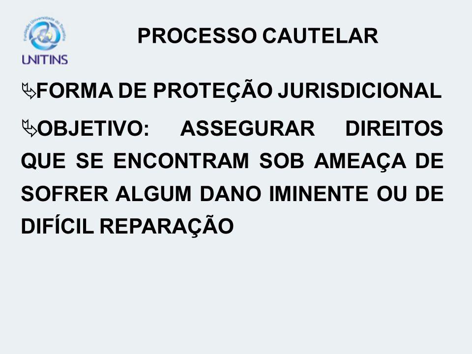 PROCESSO CAUTELAR FORMA DE PROTEÇÃO JURISDICIONAL.