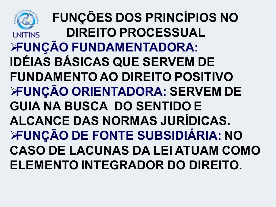 FUNÇÕES DOS PRINCÍPIOS NO DIREITO PROCESSUAL
