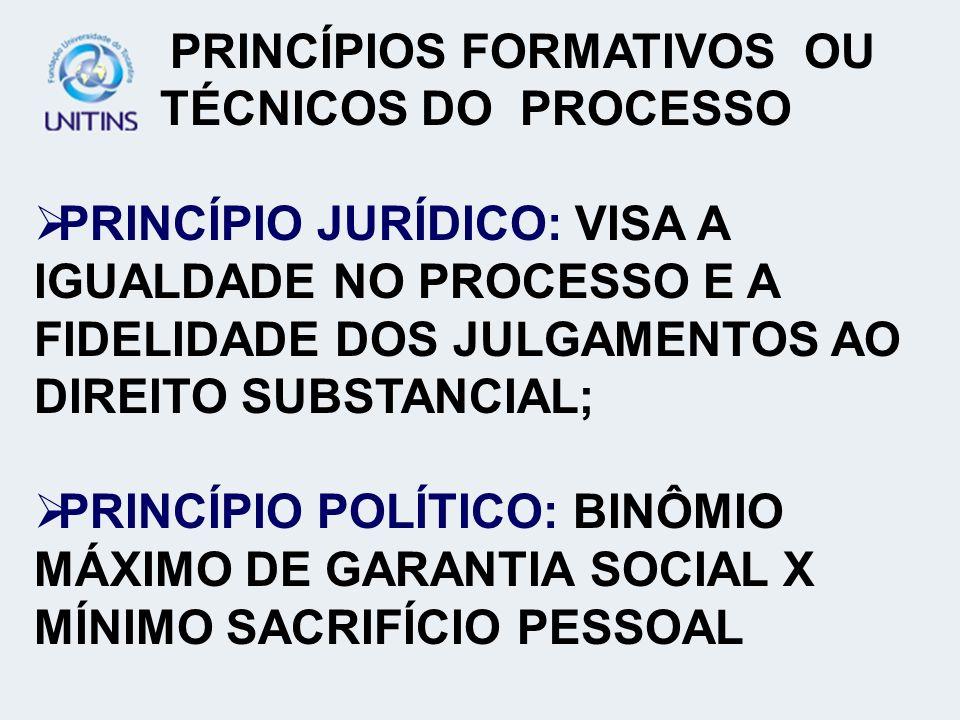 PRINCÍPIOS FORMATIVOS OU TÉCNICOS DO PROCESSO