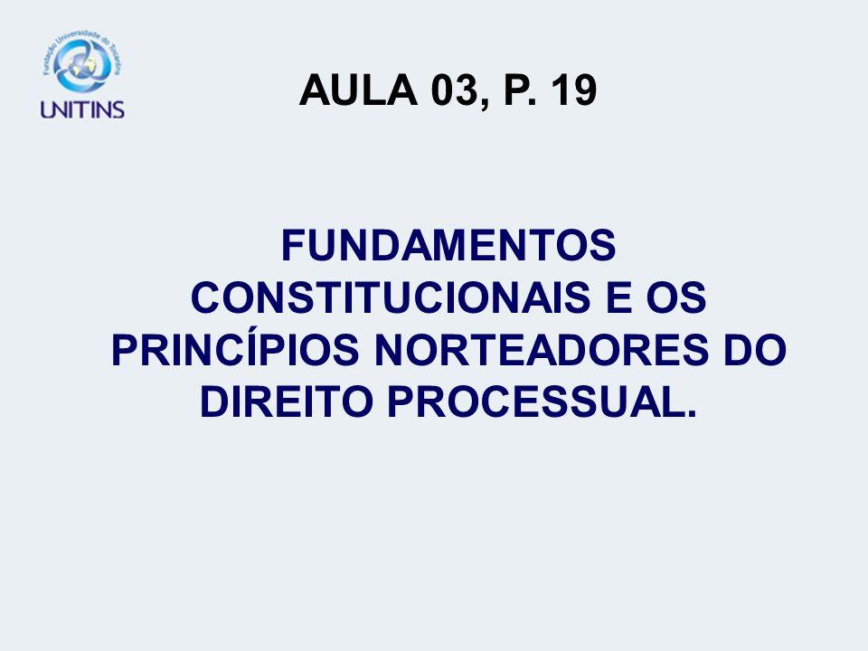 AULA 03, P. 19 FUNDAMENTOS CONSTITUCIONAIS E OS PRINCÍPIOS NORTEADORES DO DIREITO PROCESSUAL. AULA 03.