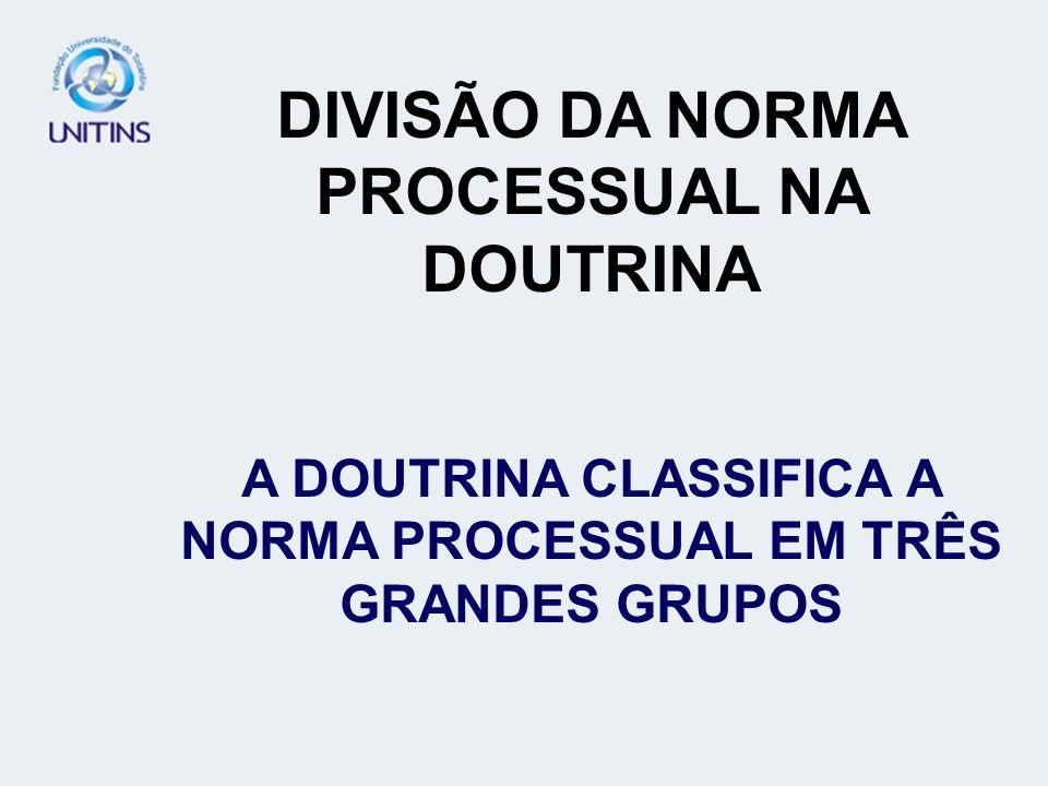 DIVISÃO DA NORMA PROCESSUAL NA DOUTRINA