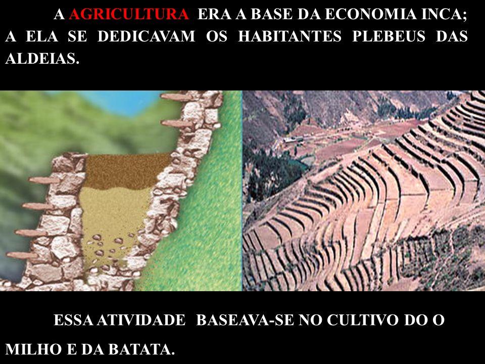 A AGRICULTURA ERA A BASE DA ECONOMIA INCA; A ELA SE DEDICAVAM OS HABITANTES PLEBEUS DAS ALDEIAS.