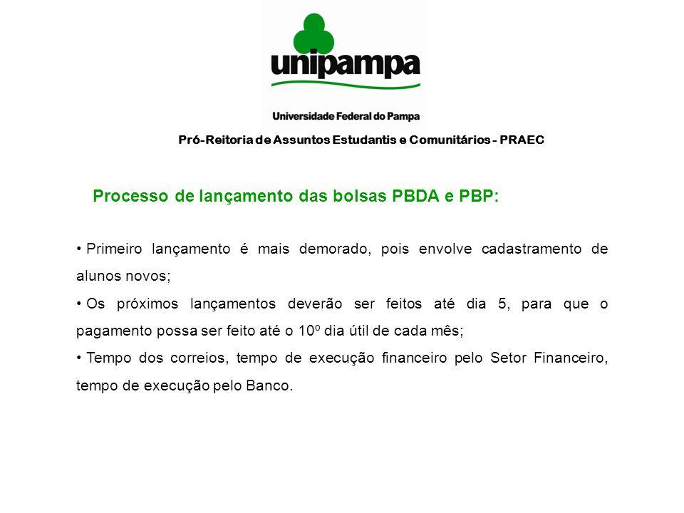 Processo de lançamento das bolsas PBDA e PBP: