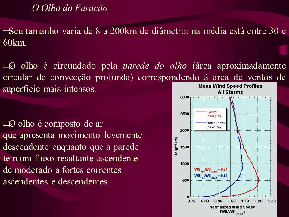 O Olho do Furacão Seu tamanho varia de 8 a 200km de diâmetro; na média está entre 30 e 60km.