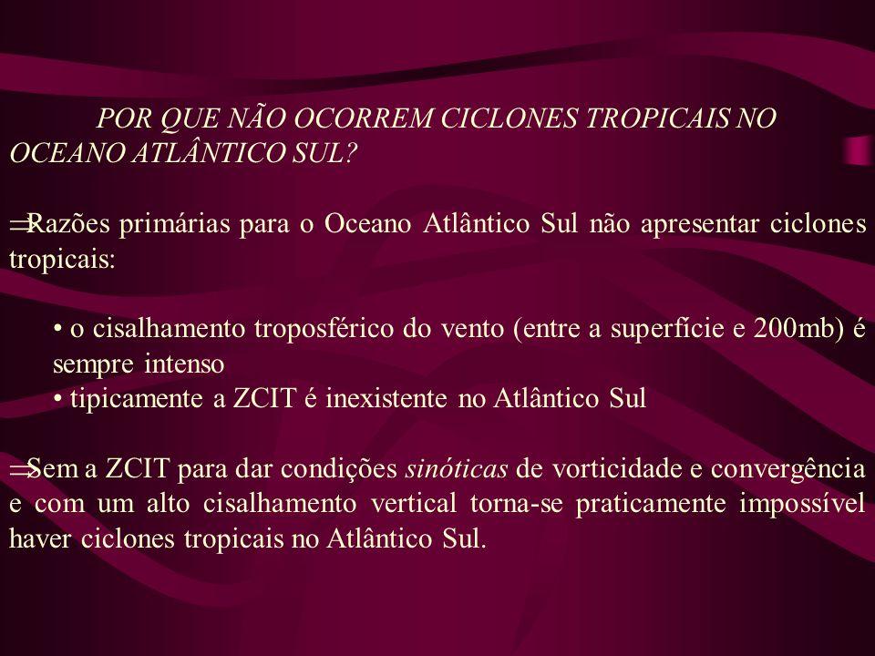 POR QUE NÃO OCORREM CICLONES TROPICAIS NO OCEANO ATLÂNTICO SUL