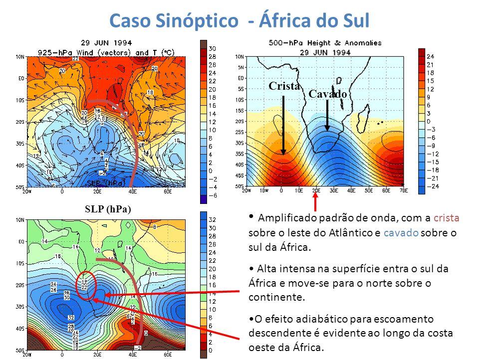 Caso Sinóptico - África do Sul