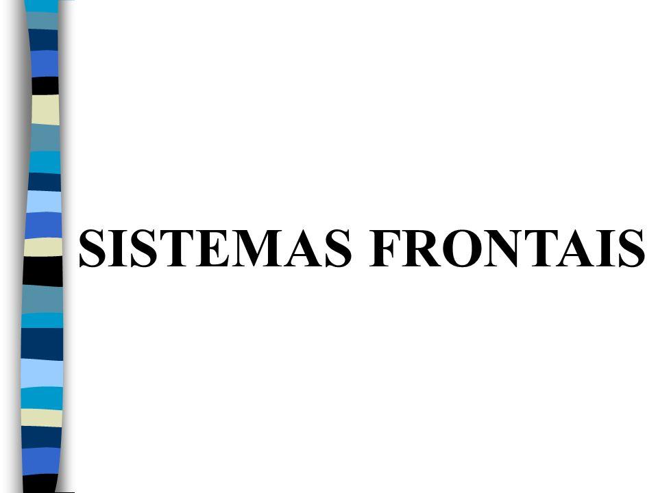 SISTEMAS FRONTAIS
