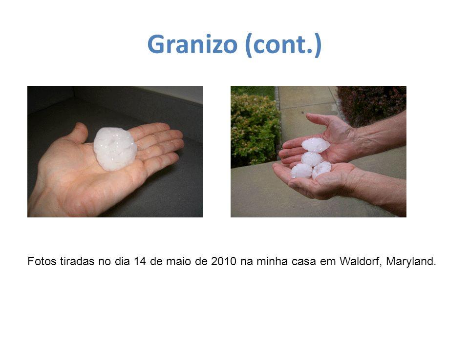 Granizo (cont.) Fotos tiradas no dia 14 de maio de 2010 na minha casa em Waldorf, Maryland.