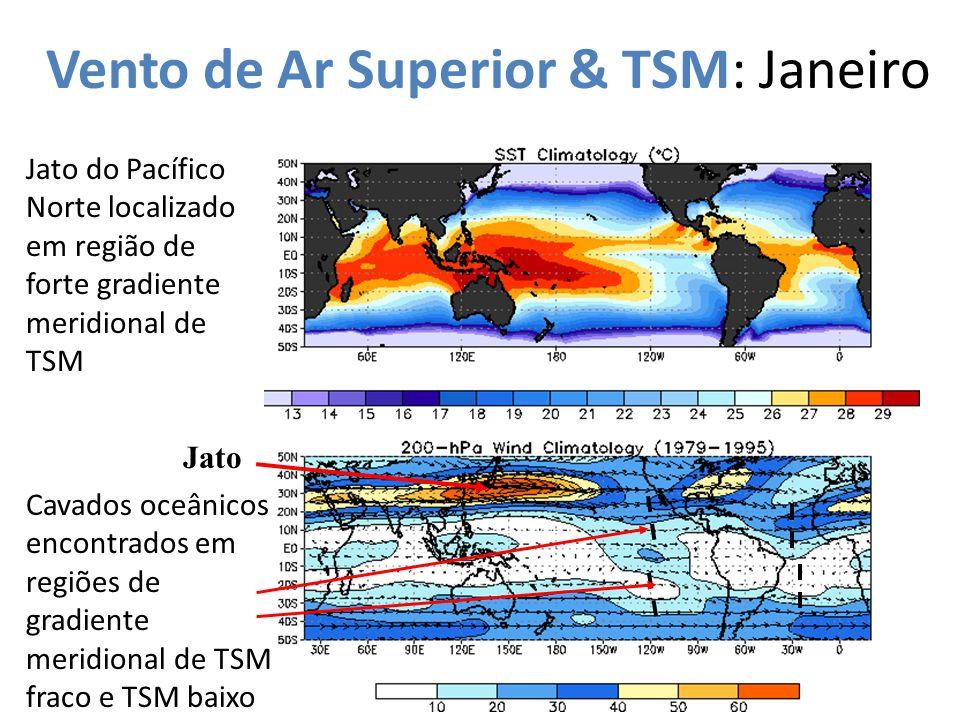 Vento de Ar Superior & TSM: Janeiro