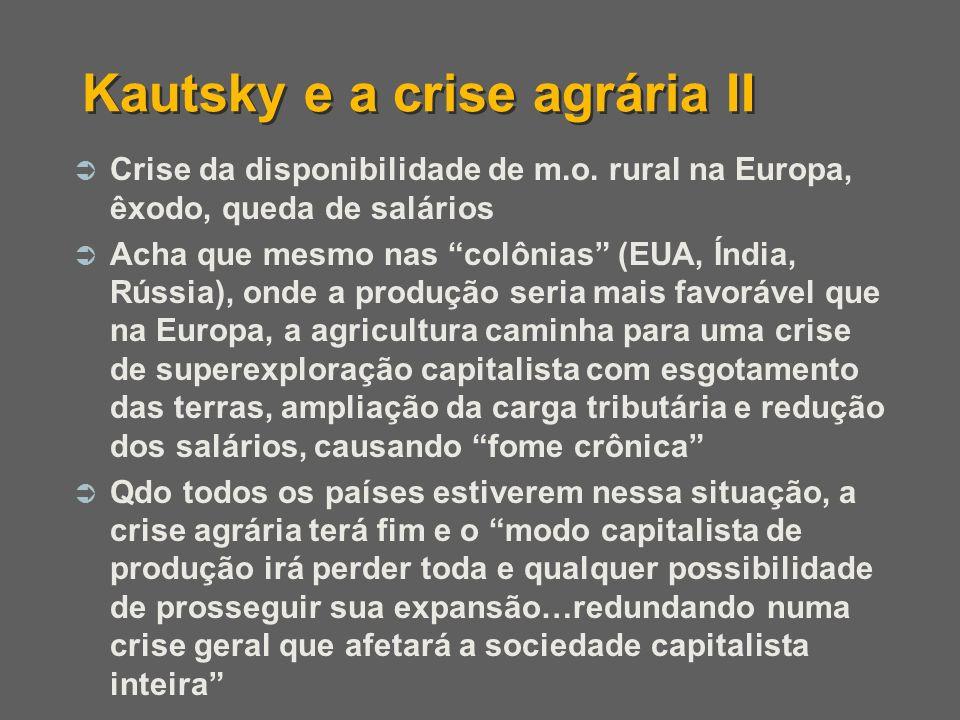 Kautsky e a crise agrária II